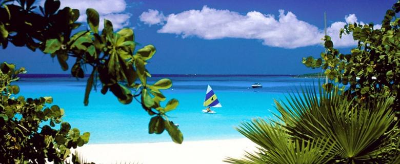 Tricel se développe dans les Caraïbes