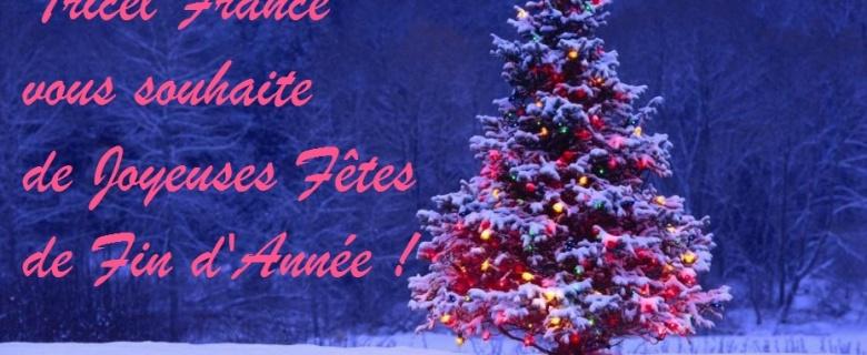 De joyeuses fêtes de fin d'année ! Noel 2014