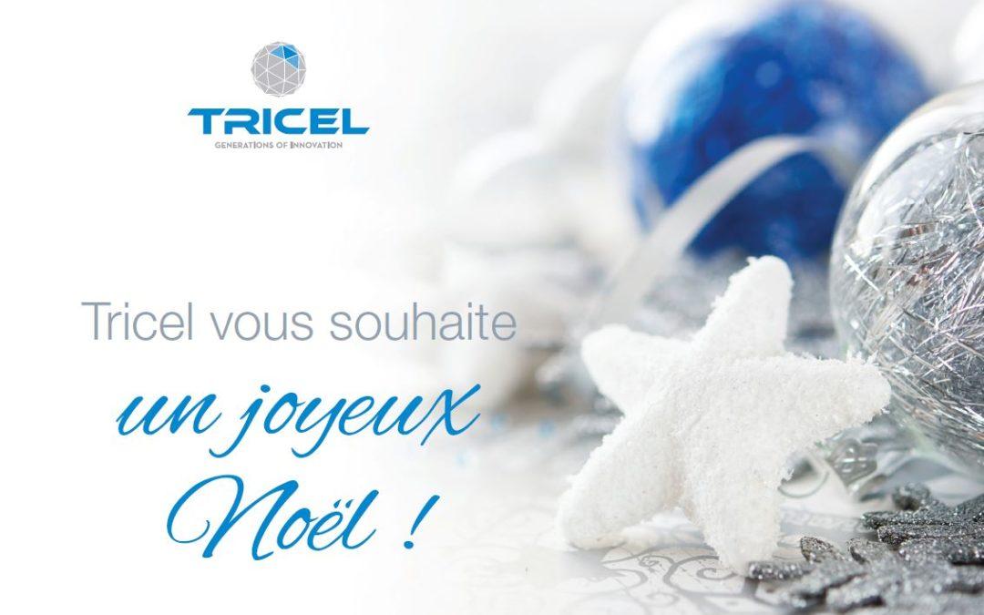 Tricel souhaite de joyeuses fêtes à tous ses clients et partenaires !